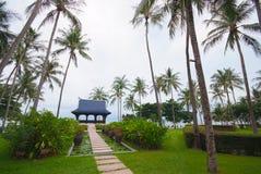 Passagem na lagoa completamente de lírios de água no jardim tropical. Foto de Stock Royalty Free