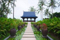 Passagem na lagoa completamente de lírios de água no jardim tropical. Imagens de Stock