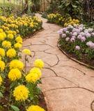 Passagem no jardim Imagens de Stock