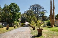 Passagem no jardim com as árvores verdes na borda da estrada Fotografia de Stock Royalty Free