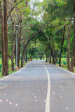 Passagem no parque da cidade jardim Fotografia de Stock