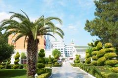 Passagem no parque do verão com palmeiras Imagem de Stock Royalty Free