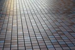 Passagem pedestre de Japão Foto de Stock Royalty Free