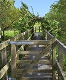 Passagem a uma área da observação em Dartington Reino Unido Fotografia de Stock Royalty Free