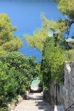 Passagen till den avskilda stranden under en markis av granträd arkivbilder