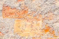 Passagens do tijolo do cascalho do fundo no beira-mar do parque Imagens de Stock