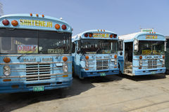 Passagerarebussar i den Belize staden arkivfoton