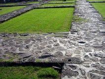 Passages couverts rocheux avec l'herbe Photographie stock