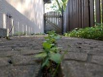 passageway стоковое фото rf