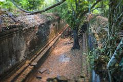 Beng Mealea. Passageway in Beng Mealea under Tilt-shift lens stock photography