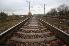 Passaggi del binario ferroviario con lo stabilimento Fotografia Stock
