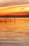 Passaggio arancio Fotografia Stock