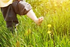 Passaggio del bambino in estate Fotografie Stock
