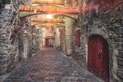 Passaggio della st Catherine a Tallinn, Estonia immagini stock