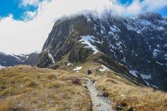 Passaggio di Mackinnon, pista di Milford, Nuova Zelanda Fotografie Stock