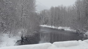 Passaggio di Snowqualmie, Washington 4 Immagine Stock