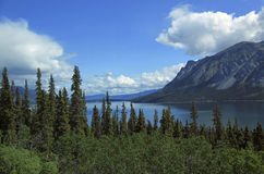 Passaggio & itinerario bianchi del Yukon Fotografie Stock Libere da Diritti
