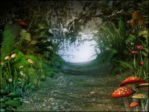 Passaggio magico in una vecchia foresta Fotografia Stock