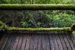 Passaggio nel parco nazionale del inthanon di Doi, Tailandia fotografia stock libera da diritti