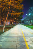 Passaggio pedonale alla notte Fotografia Stock