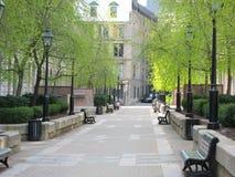 Passaggio pedonale calmo del parco in primavera Fotografia Stock Libera da Diritti