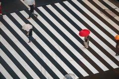 Passaggio pedonale con gli ombrelli, Sukiyabashi, pedone, incrocio, Ginza, Tokyo fotografia stock