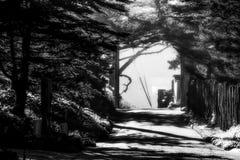 Passaggio pedonale con luce solare e foschia Fotografia Stock Libera da Diritti