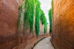 Passaggio pedonale concreto accanto alla parete marrone dell'argilla al giardino pubblico Fotografia Stock