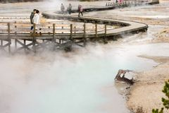 Passaggio pedonale del bacino del geyser nel paesaggio del parco nazionale di Yellowstone Fotografia Stock