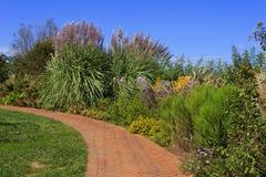 Passaggio pedonale del giardino con l'erba di pampa fotografia stock libera da diritti