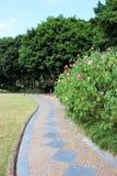 Passaggio pedonale del Greensward Fotografie Stock