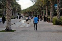 Passaggio pedonale del parco allineato palma Fotografia Stock