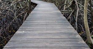 Passaggio pedonale del ponte di legno Immagini Stock