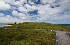 Passaggio pedonale dell'isola del pinguino Parco marino delle isole di Shoalwater Rockingham Australia occidentale Fotografia Stock Libera da Diritti