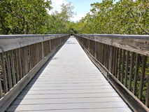 Passaggio pedonale dell'isola di Weedon Immagine Stock Libera da Diritti