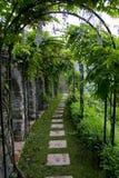 Passaggio pedonale della natura. Fotografia Stock Libera da Diritti
