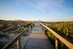 Passaggio pedonale della spiaggia Immagine Stock Libera da Diritti