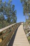 Passaggio pedonale di legno alla montagna Fotografie Stock