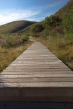 Passaggio pedonale di legno attraverso il cespuglio Fotografie Stock Libere da Diritti