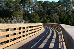 Passaggio pedonale di legno attraverso la palude di un'isola della barriera Immagini Stock
