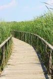 Passaggio pedonale di legno dell'acqua fotografia stock