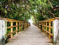 Passaggio pedonale di legno di accesso della spiaggia immagini stock