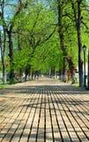 Passaggio pedonale di legno in una sosta Fotografia Stock Libera da Diritti