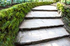 Passaggio pedonale di pietra con la vecchia erba rustica verde del muschio Fotografie Stock Libere da Diritti