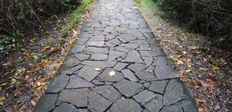Passaggio pedonale di pietra del ponte Fotografia Stock