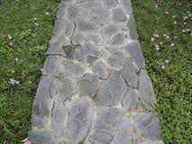 Passaggio pedonale di pietra grigio sul giardino Fotografia Stock