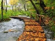 Passaggio pedonale di Plitvice Fotografia Stock Libera da Diritti