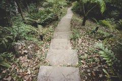Passaggio pedonale di Siriphum, provincia di Chiang Mai fotografia stock libera da diritti