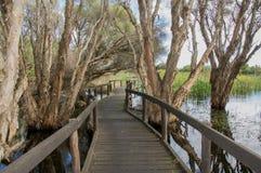 Passaggio pedonale elevato nel lago herdsman Immagini Stock