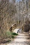 Passaggio pedonale in foresta Immagini Stock Libere da Diritti